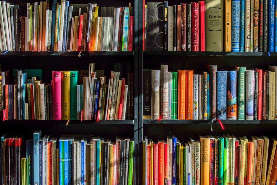 Bücher im Bücherregal