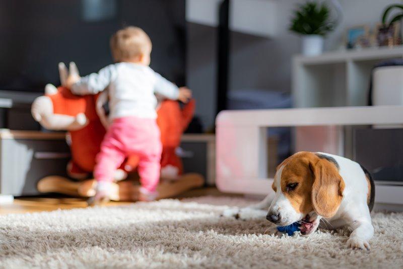 Ein spielendes Kind ohne Laufgitter